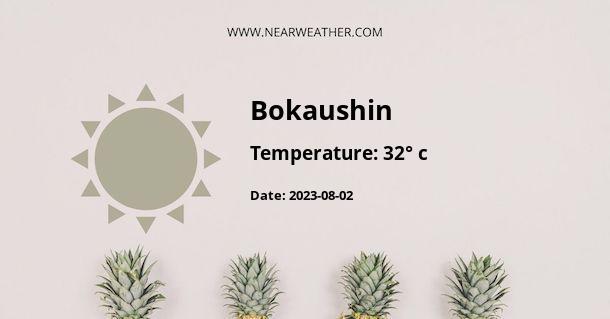 Weather in Bokaushin